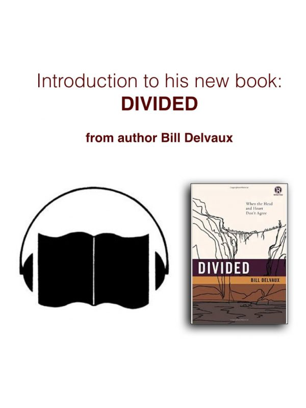 Divided introduction
