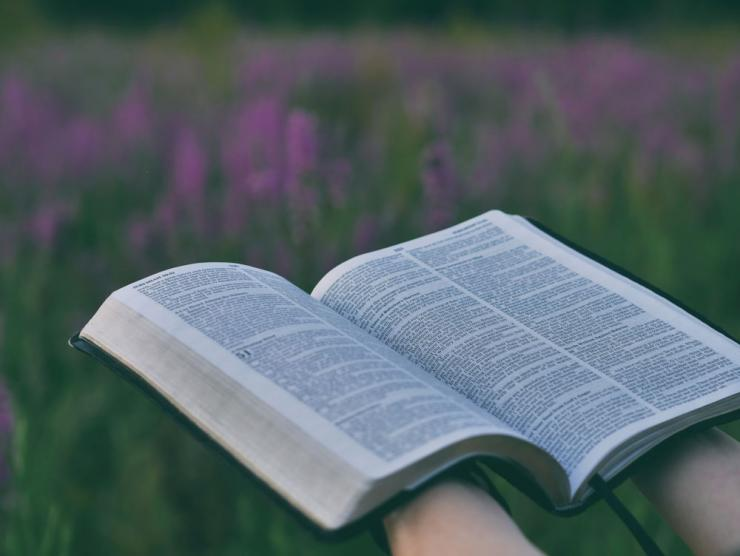 Reading the Bible with the imagination